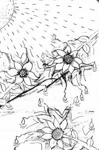 sunflowerscrying